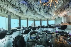 restaurantul Maldive