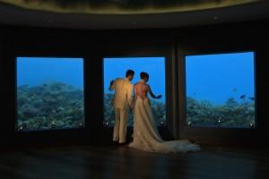 59900288-H1-Subsix_Wedding1